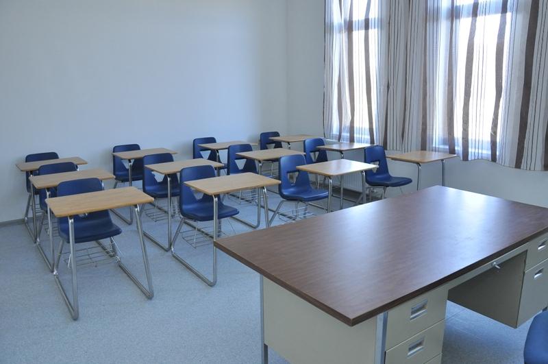 უამინდობისა და H1N1-ს გამო სკოლების ნაწილში სასწავლო პროცესი შეჩერდა