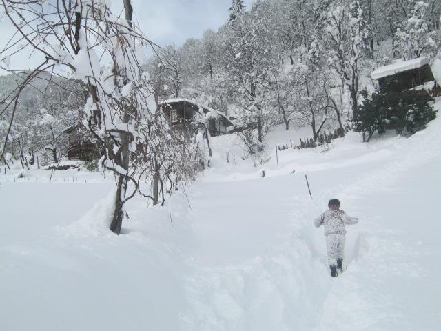თოვლი შუახევში, ფოტო: ნეტგაზეთი