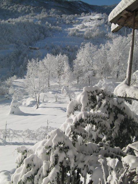 თოვლი შუახევში, ფოტო: ელიკო კეჟერაძე/ნეტგაზეთი
