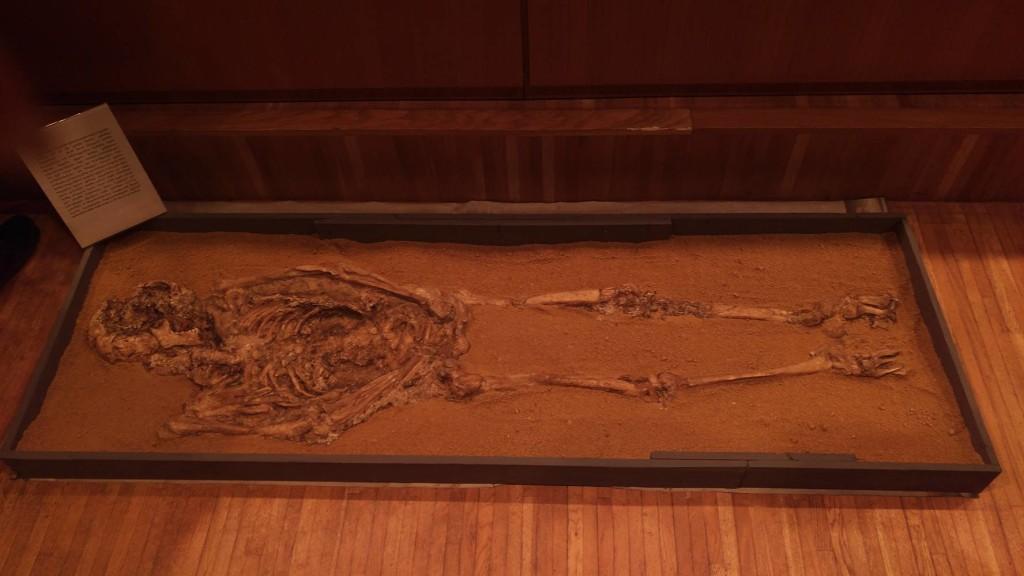 კოტიას კლდის მღვიმის მეზოლითური ხანის 9.700 წლის ადამიანის ჩონჩხი