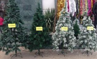 გასაყიდად გამოტანილი საახალწლო ნაძვის ხეები, ყარაბაღი, ფოტო: ანაიტ დანიელიანი/ნეტგაზეთი