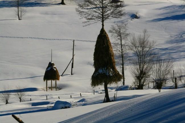 ზამთარი მაღალმთიან აჭარაში, შოთა გუჯაბიძის ფოტო