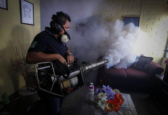 ზიკა ვირუსი შესაძლოა ამერიკის ქვეყნებში გავრცელდეს