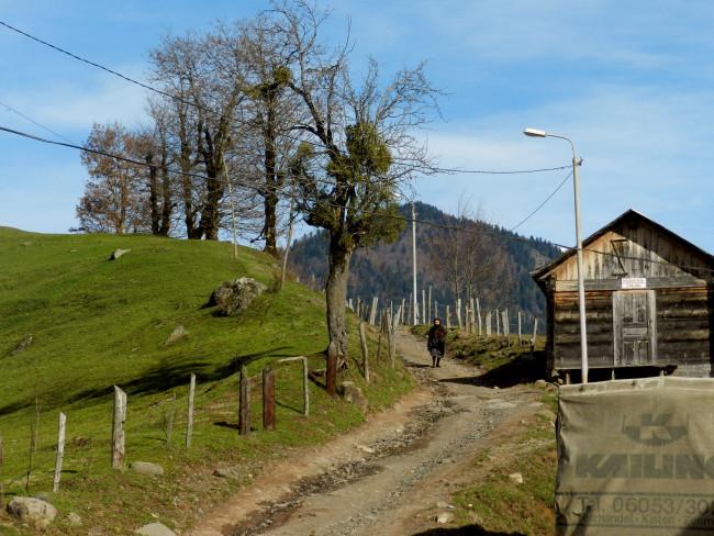 სოფელი ირემაძეები