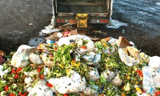 food-waster