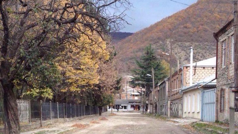 Главврач больницы Ахалгорского района заявляет об ухудшении эпидемиологической ситуации