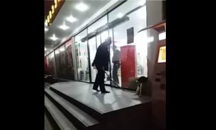 ალგანის დაცვის თანამშრომელი სცემს მიუსაფარ ძაღლს