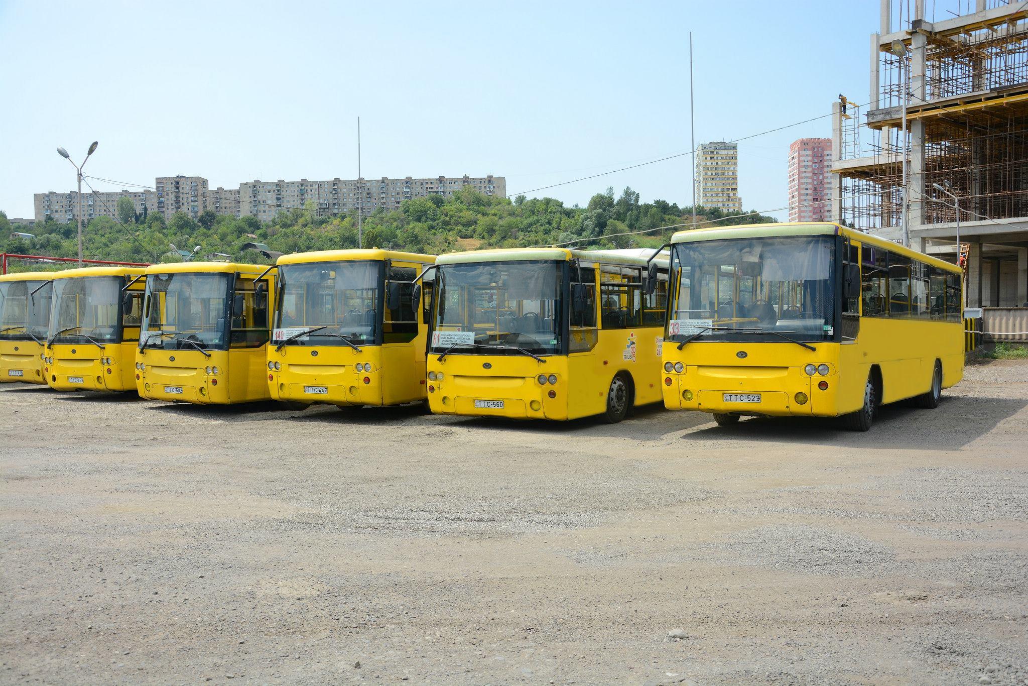 ყვითელი ავტობუსები, მუნიციპალური ტრანსპორტი. ფოტო: TTC