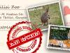 თბილისის ზოოპარკში ახალი ცხოველები ჩამოდიან © Tbilisi Zoo