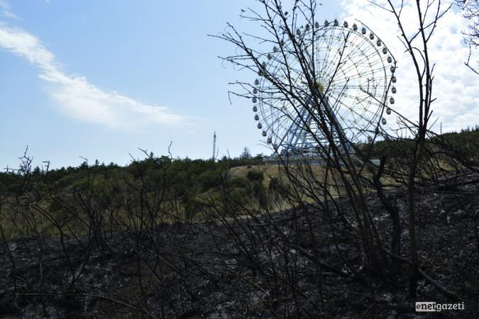 ხანძარი მთაწმინდაზე, მეორე დღე 09.08.17 ფოტო: ნეტგაზეთი/მარიამ ბოგვერაძე