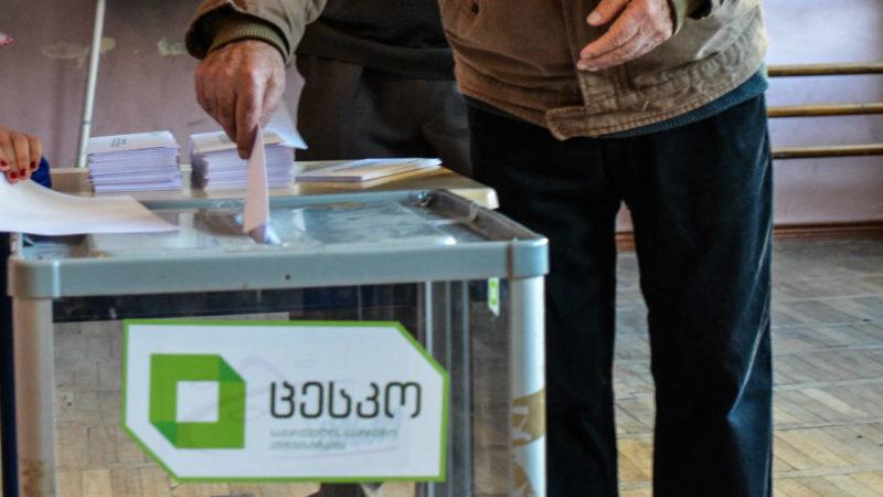 Опросы IRI — Кто решит судьбу парламентских выборов в Грузии