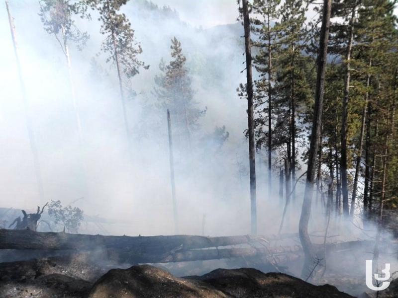 მღებრიშვილი: აბასთუმანში ცეცხლის ყველა ღია კერა ფაქტიურად ჩამქრალია
