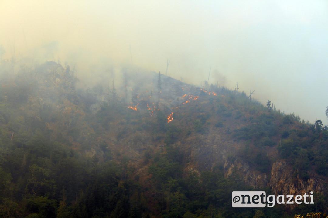 ხანძარი დაბის დასახლებულ პუნქტს მიუახლოვდა, თუმცა ცეცხლი მდინარე გუჯარულამ დააბრკოლა. მოსახლეობა გზის გადაკეტვითაც იმუქრებოდა. 22.08.2017. ფოტო: გიორგი დიასამიძე/ნეტგაზეთი