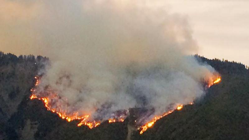 Пожар в Боржоми локализовать не удалось