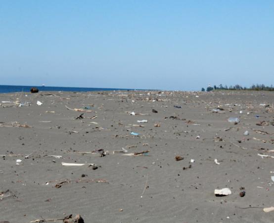 მალთაყვის დაბინძურებული სანაპირო. ფოტო: მიხეილ გვაძაბია/ნეტგაზეთი