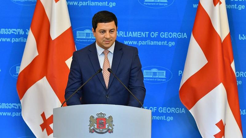 Председатель парламента Грузии: У оппозиции осталась неделя на принятие окончательного решения