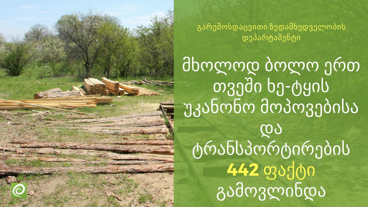 ბოლო 1 თვეში ხე-ტყის უკანონო მოპოვებისა და ტრანსპორტირების 442 ფაქტი გამოვლინდა