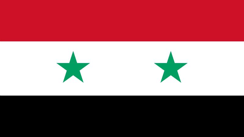 დროშა, რომელსაც ასადის მთავრობა აღიარებს