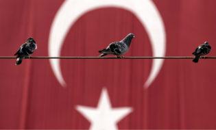 თურქეთის დროშა და მტრედები. ფოტო: EPA/SEDAT SUNA