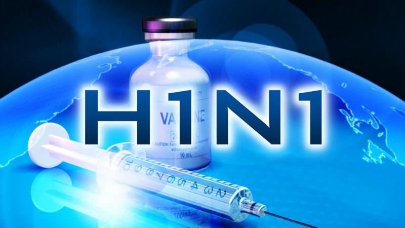 ბერბუკში გარდაცვლილ 10 თვის ბავშვს H1N1 ვირუსი ლაბორატორიულად დაუდასტურდა