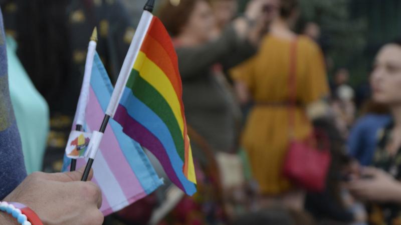 Трансгендеры против бюрократии и непрофессионализма