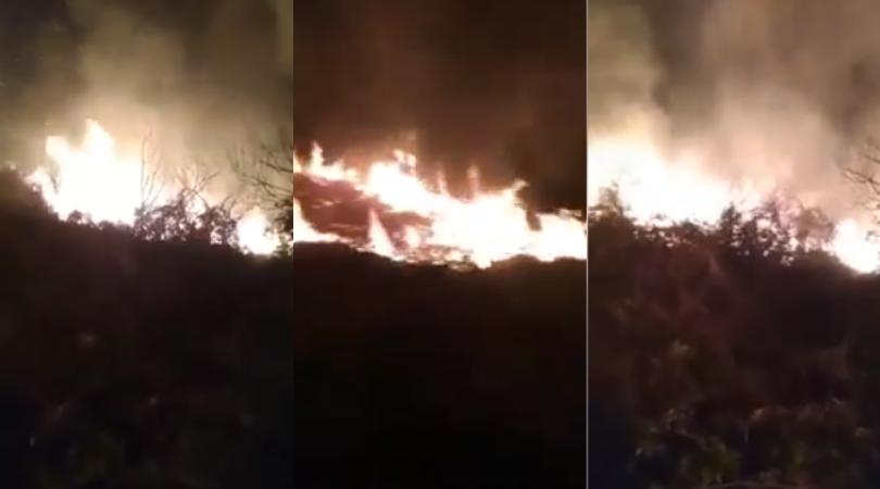 ოზურგეთში ტყე იწვის – ცეცხლის ქრობას ხელს რთული რელიეფი უშლის