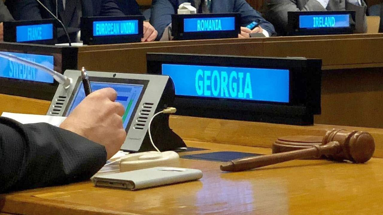 Грузию поддержали в совбезе ООН
