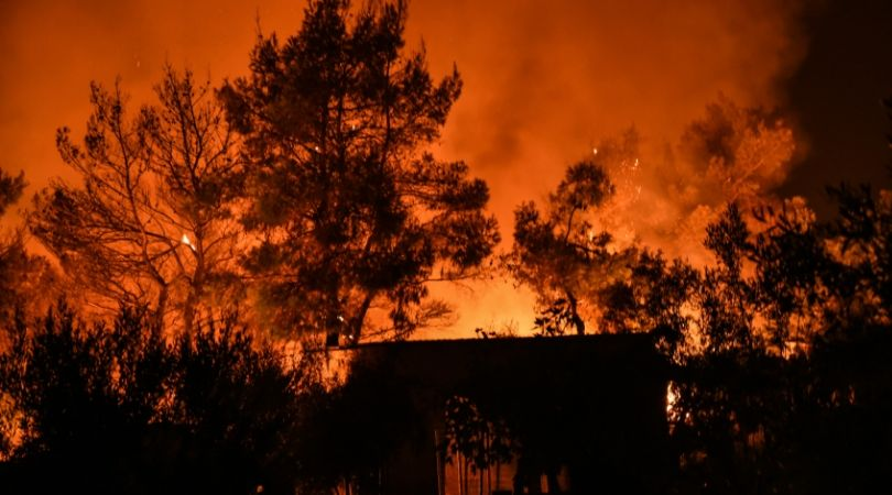 ტყის ხანძარი საბერძნეთში. ფოტო: EPA/WASSILIS ASWESTOPOULOS