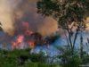 ხანძარი ამაზონის ჯუნგლებში. ფოტო: AFP