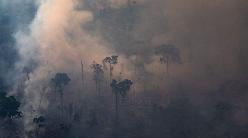 ხანძარი ამაზონის ტყეებში. ფოტო: BBC