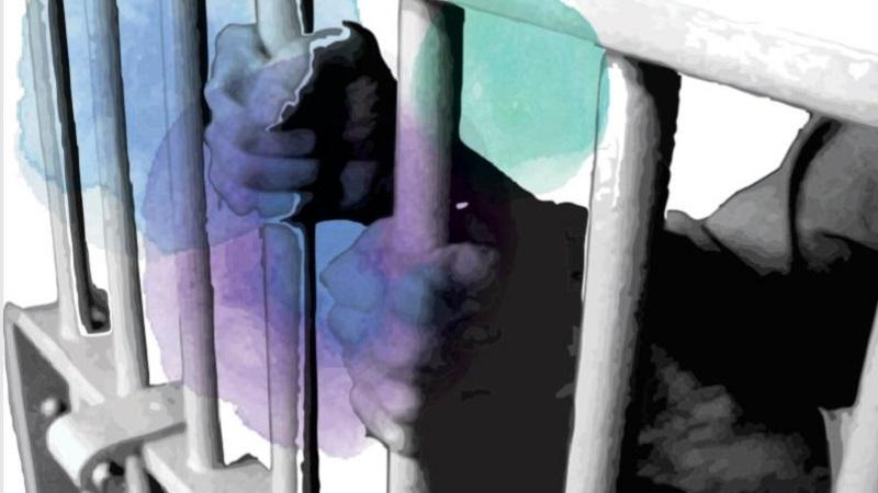 გარე სამყაროსთან კავშირი პატიმართა რეაბილიტაციისთვის უმნიშვნელოვანესია – კვლევა