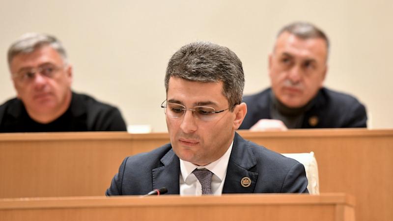 «Грузинская мечта»: Проведение плебисцита не рассматривается