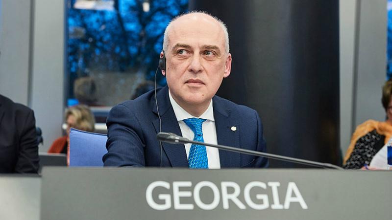МИД Грузии: не постесняемся назвать виновных в кибер-атаке