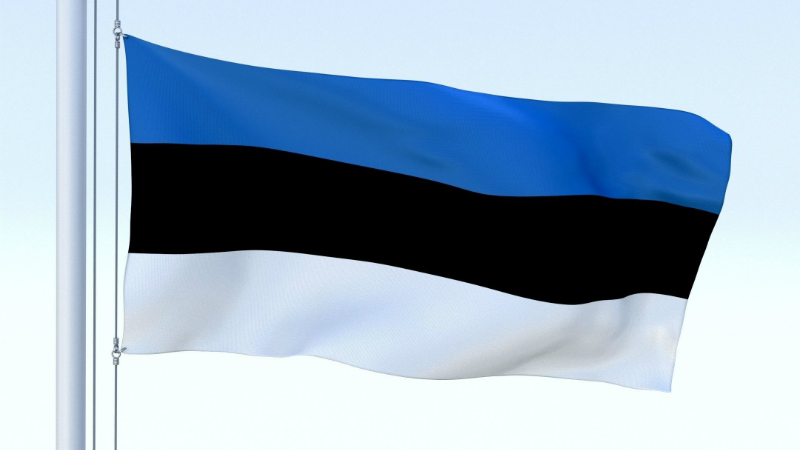 Прибывающим из Грузии в Эстонию придется пройти 14-дневную самоизоляцию