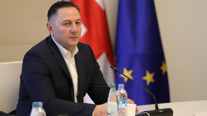 Глава МВД Грузии: Если амнистия должна коснуться Мелия, почему не должна коснуться более легких статей?