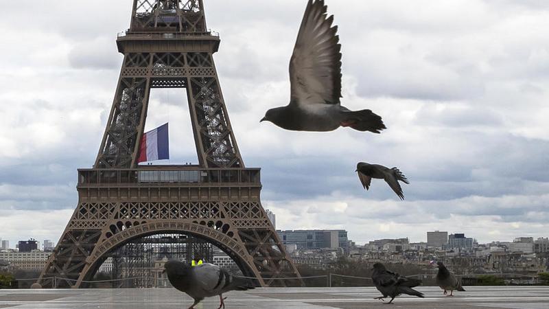 Во Франции более 2500 человек посетили нелегальную вечеринку
