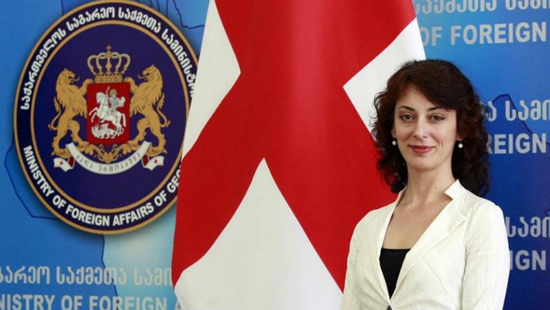 Экс-посол Грузии в ЕС примкнула к партии Гахария