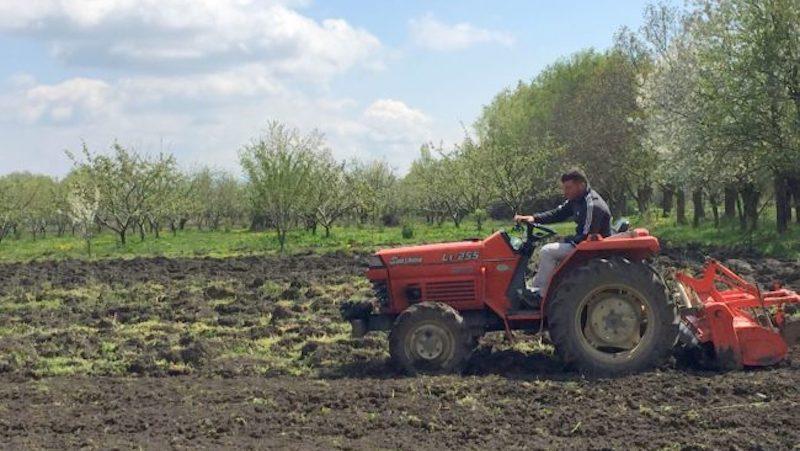 ვინ და რა პირობით შეძლებს აგროდიზელის იაფად შეძენას — ინფორმაცია ფერმერებისთვის