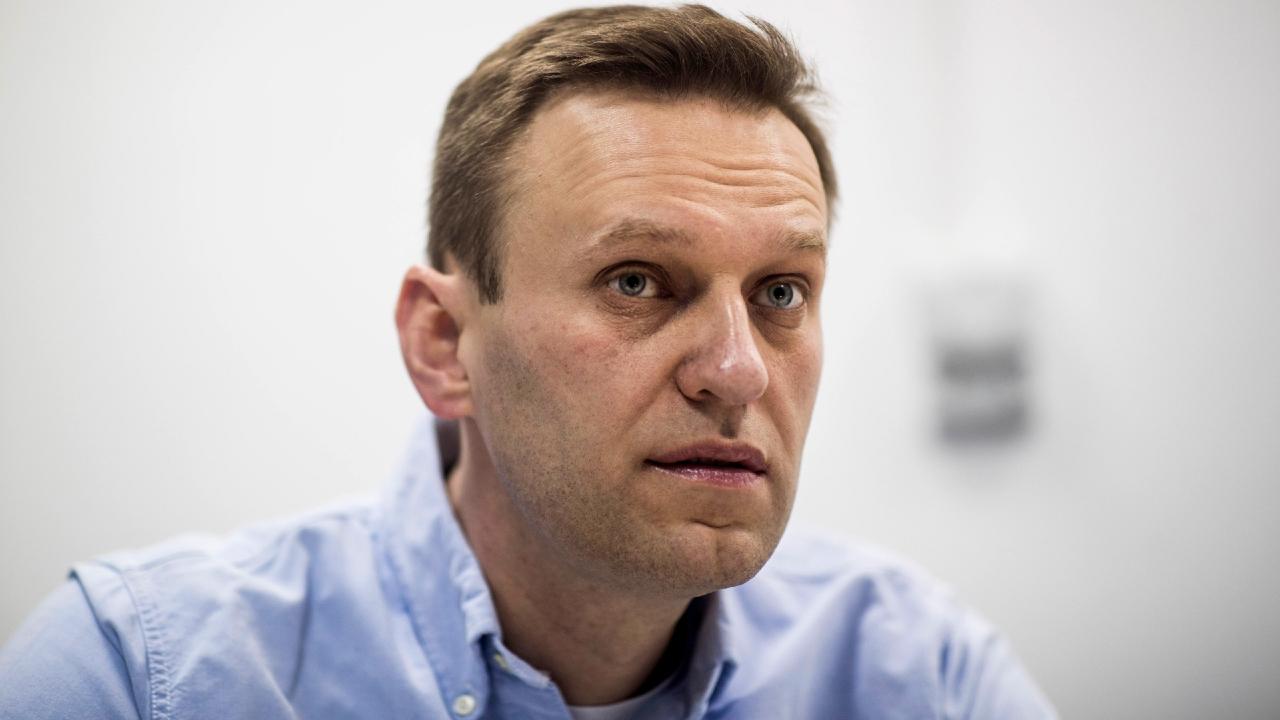 Грузия присоединилась к заявлению ЕС об отравлении Навального