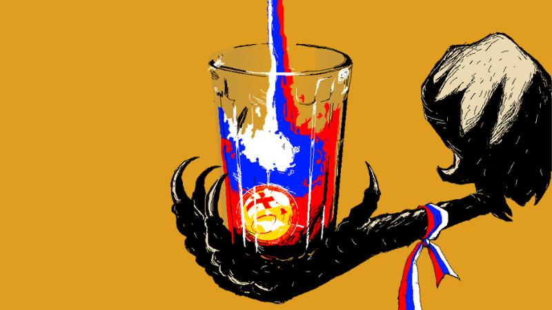 Как [не] реагируют власти Грузии на деятельность проросийской партии