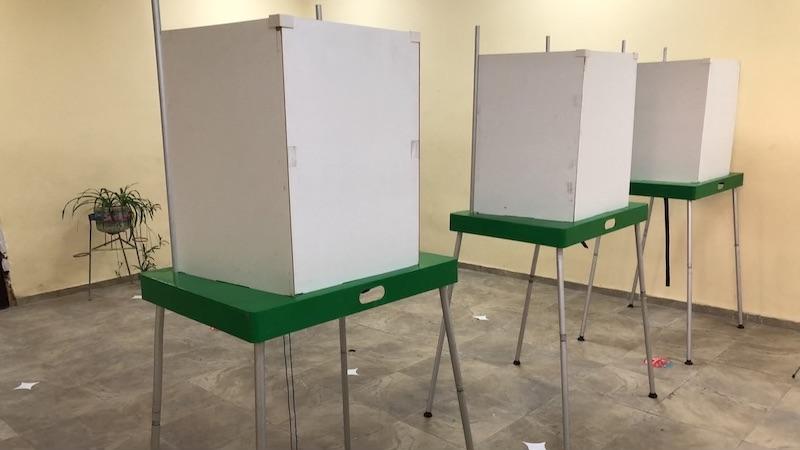 Опрос IRI: За проведение досрочных парламентских выборов в Грузии выступил 51% опрошенных