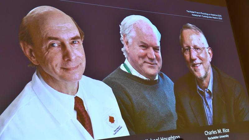 Нобелевскую премию по медицине присудили исследователям гепатита С