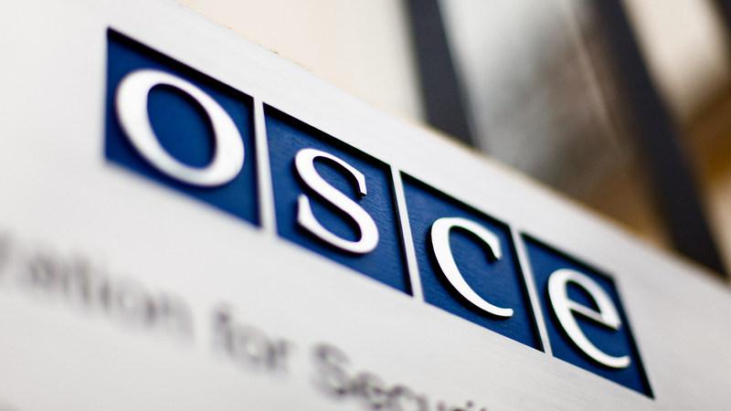 Наблюдатели ПА ОБСЕ о событиях развернувшихся в Грузии после выборов
