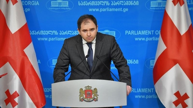 «Грузинская мечта» о критике со стороны международного сообщества