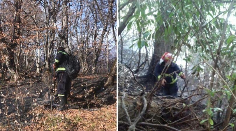 Пожары в Грузии: ночью возникли два новых очага