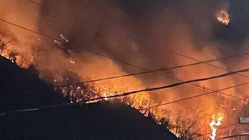 Ахвледиани: Мы готовы помочь вертолетами | Пожары в Абхазии