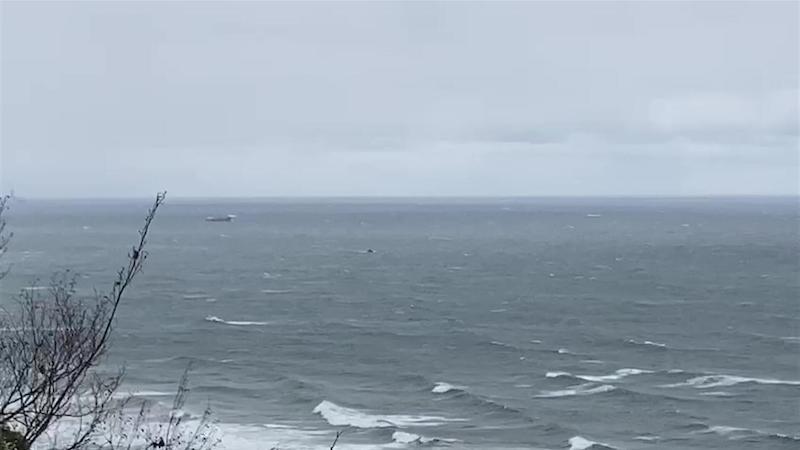 შავ ზღვაში ფოთიდან გასული უცხოური გემი ჩაიძირა