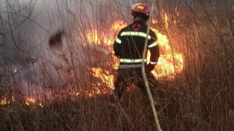 Пожары в Грузии: за прошедшую ночь ликвидировано два очага возгорания