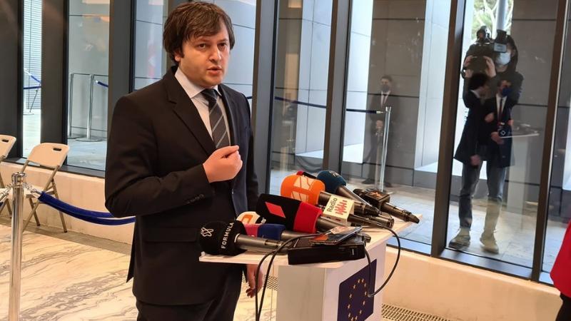 კობახიძის თქმით, EU-ს წარმომადგენლობაში მხოლოდ არჩევნებზე ისაუბრეს