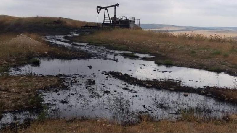 კახეთში ნავთობი იღვრება, სახელმწიფო ფრონტერას სანქცირებას აანონსებს